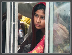 If I could Read [..Dhaka, Bangladesh..] (Catch the dream) Tags: woman bus girl eyes veil expression bongo journey dhaka saree bengal bangladesh bangla bengali bangladeshi bangali supershot paltan abigfave anawesomeshot catchthedream gettyimagesbangladeshq2