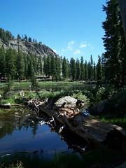 20070717 Ellis Lake