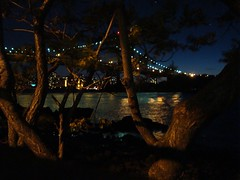 Bridges though the branches (Super Happy Eats) Tags: city nyc newyorkcity bridge blue trees light newyork tree green water night river dark lights branch branches bridges eastriver astoria astoriapark shoreboulevard