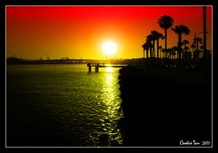 Glorious Time (mac_raw) Tags: sunset orange hot color bravo searchthebest superb masterpiece bff bestestfriend themoulinrouge longbeachcalifornia supershot magicdonkey tamron18200mm yourethebest xoxoxoxoxoxoxo d80 flickrsbest mywinner andiloveyoutoo xoxoxoxoxo henyo shieldofexcellence anawesomeshot colorphotoaward superaplus aplusphoto ultimateshot flickrplatinum coloraward supercookie superbmasterpiece infinestyle goldenphotographer goldenphotographeraward diamondclassphotographer flickrdiamond xoxoxoxoxoxoxoxox suitsoptional macraw cookieliciousimage cookieisthebestandcutest nightmysweetfriend greatestphotographer chattodeath cookiehascometorulethefrontpageonceagain luvyoubunches heysomeonestolemytaglinelol biggesthugintheworld andyourestillhot cookiethebest uaresosupersweet behappykisses igotosleepnonewartonlydreamsjejekisses