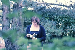 Reading in the trees (Nicolas Hoizey) Tags: trees tree reading book jacqueline read arbres lecture concours effect arbre livre sapin lire participation effet modifi c41 traitement crois traitementcrois livreouvert