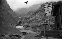 (José Júpiter) Tags: africa bw mountain 35mm blackwhite morocco marrocos berbers toubkal highatlas jbeltoubkal