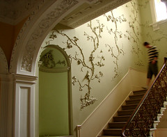 Ornamental descent, Royal Fort, Bristol (archidave) Tags: uk england house architecture bristol hall vines stair university plaster molding stairwell staircase georgian moulding rococo plasterwork adesign