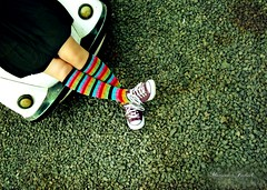 Baby, you can drive my Car (Nika Fadul) Tags: socks colorful stripes ps allstar fusca britas overtheexcellence mnicafadul nikafadul queridinhasdanika