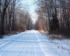 Winter Trail (akahodag) Tags: winter wallpaper wisconsin rhinelander snowmobiletrail topshots groomedtrail oneidacounty goldstaraward worldwidelandscapes