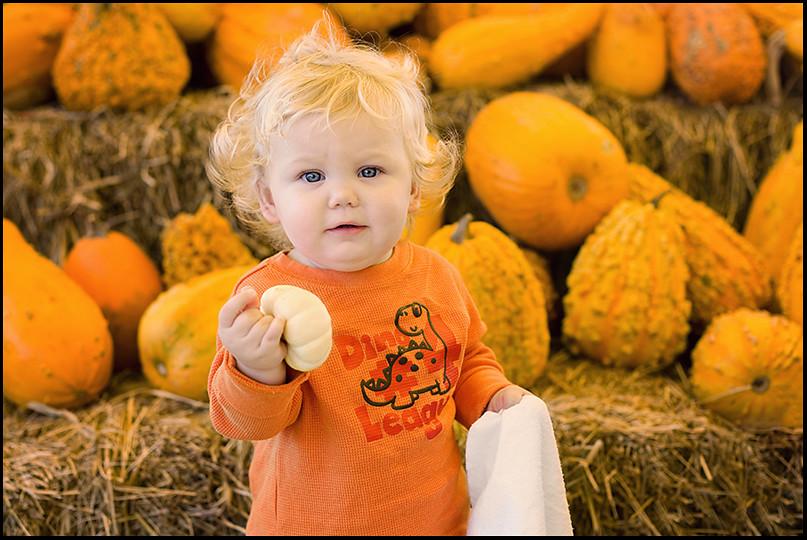 wspumpkin (1 of 8)