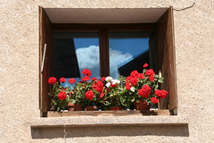 Sky in the window #3 (Umberto Luparelli) Tags: flowers blue red cloud window glass village eu queyras ceillac