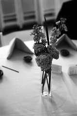 Table Arrangement (S. McCain) Tags: flowers wedding bw film blackwhite pentax k1000 centerpiece weddingreception woodinville hollywoodschoolhouse scottfaulkner pamelafaulkner