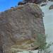 1997 #278-8 Sahara glyph