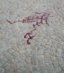 Blood on the stones, dam square (Jo Hedwig Teeuwisse) Tags: world amsterdam square war dam nazi german scouts ww2 soldiers shoot
