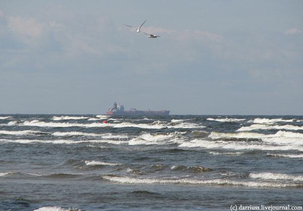 baltic_ship_seagulls