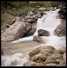 Valle delle Messi (Felinux - Cogito ergo boom!) Tags: italia hasselblad matteo agfa brescia scordino 500cm pontedilegno portrait160 valledellemessi felinux photofelinux matteoscordino