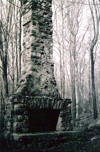 chimney in the woods