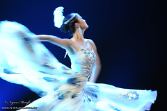 The soul of a Peacock (Najwa Marafie - Free Photographer) Tags: china art for dance nikon theater artist peace name country performing peacock location unesco peoples soul disabled kuwait 2010 the troupe najwa mydream dasma d3x nstudio marafie nstudiolivecom wwwnstudiocomkw