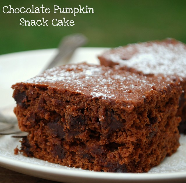 Chocolate Pumpkin Snack Cake crop