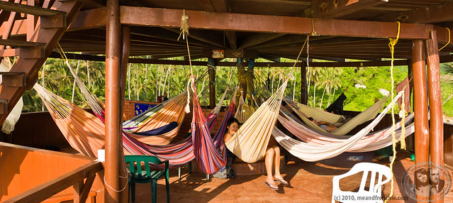 Hammocks With Memorable Views