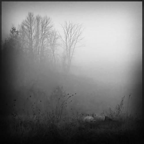 ReeDrummondBoySleeping-KarinWilcoxLandscape