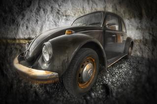 A beetle ...