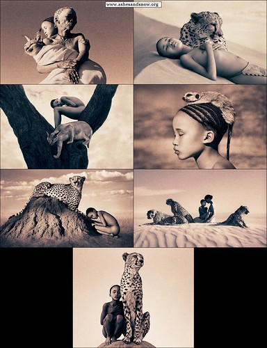 www.ashesandsnow.org_bestiary_san-bushmen_kalahari_feline