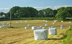 Aliens have landed? (algo) Tags: blue sky white green field clouds photography chilterns harvest hedge fields bales algo hedges