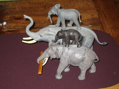 Elephants two