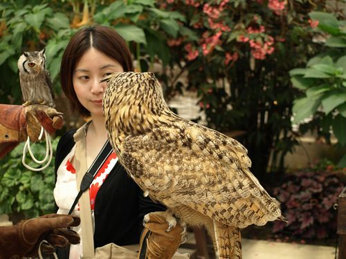 me with two owls