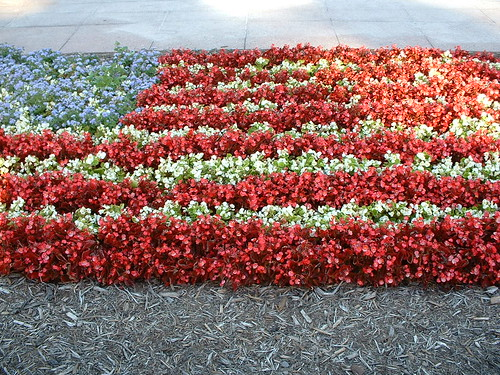 US flag in flowers