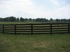 Farmland for acres (spader) Tags: horses cypress threechimneys sd600