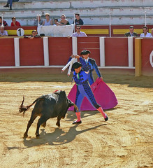 Stabbing the Bull (JuanJ) Tags: new city travel family pink wedding friends light red party vacation portrait sky people favorite white black building cute green beach me nature beauty architecture photoshop square lens landscape lumix photo interestingness amazing spain focus friend flickr shot bokeh picture location bull panasonic explore national photograph squareformat fav ps2 bullfight favs fz fuengirola bullfighting fz30 nationalgeographic iphone neatimage supershot anawesomeshot iphoneography mygearandme ringexcellence instagramapp