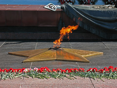 Flame (shutterBRI) Tags: travel flowers canon fire photography photo memorial russia moscow powershot flame redsquare russian unknownsoldier kremlin 2007 eternalflame a630 greatpatrioticwar mockba shutterbri brianutesch flickrchallengegroup brianuteschphotography