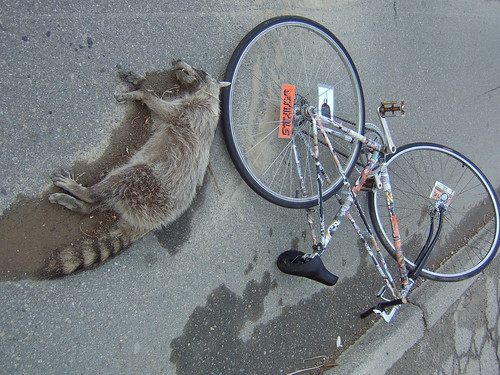 Bicykiller Roadkill