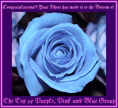 Top 25 Purple, Pink and Blue