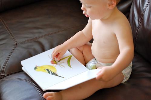 buhr book
