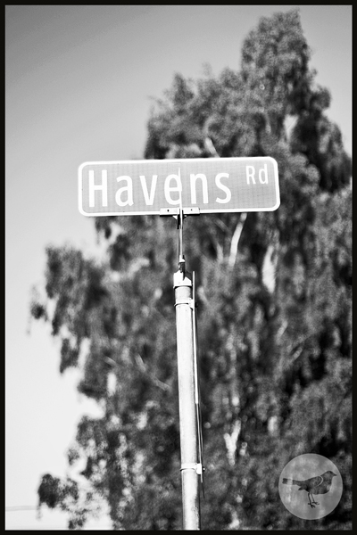 Havens Family 620