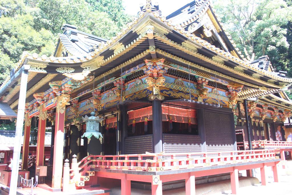 Shizuoka Guide (3)