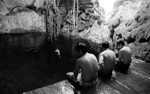 Cenotes of Cuzama 03