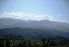 of! (nefasi) Tags: le koru gibi dağlar mumdibineışıkvermez bağlar yeşili mahsunn armutdibinedüşmez senigörmek karadenizdenefesalmak