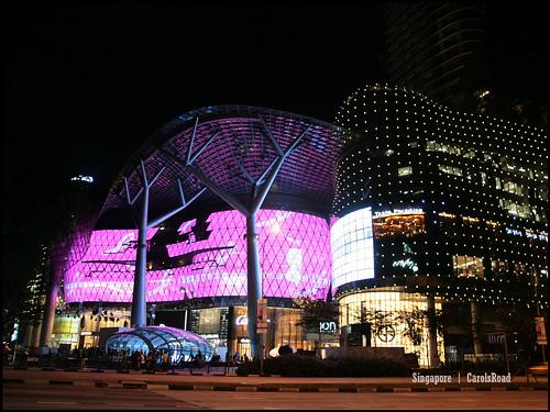 2010_1030 新加坡 018Singapore_42