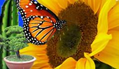 Cameron Highlands Floral 金马仑高原  中英网页 (Visit Cameron Highlands Malaysia) Tags: floral highlands visit cameron