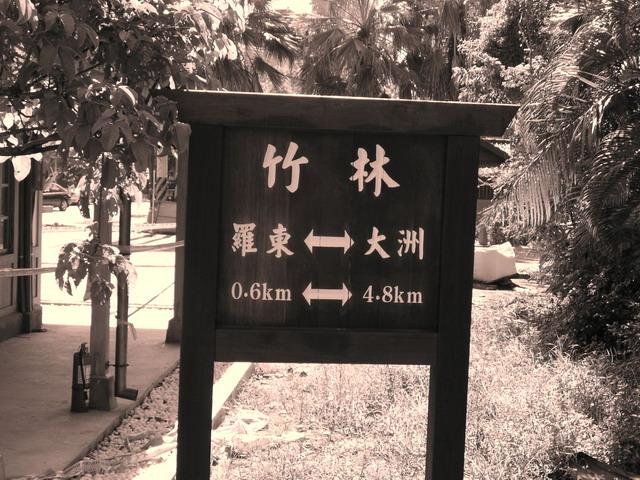 1467296443_通往太平山的第一站 竹林