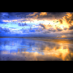 La Mer Du Nord (Dimitri Depaepe) Tags: sea reflection beach birds clouds sand bravo raw palace oostende hdr ostend magicdonkey outstandingshots abigfave pentaxk110d aplusphoto holidaysvancanzeurlaub diamondaward excellentscenic