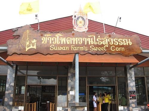 Suwan Farm's Sweet Corn ข้าวโพดหวานไร่สุวรรณ