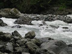 Rapids (Michael James Boyle) Tags: usa landscape wa horseshoebend