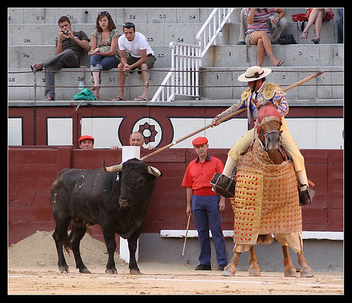 Toro de Hernández Pla