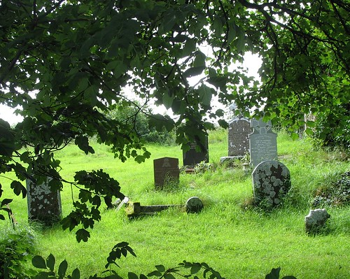 Cemetary near Lough Gur