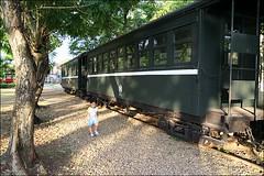 阿里山森林鐵路20