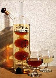Tequila Romance