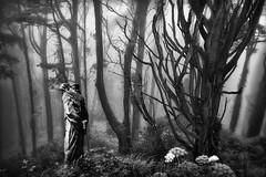 Solitude (reecardo-v) Tags: bwdreams impressedbeauty
