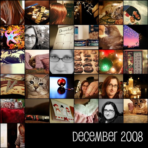 December 2008  [project 365]