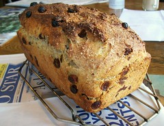 Stuffing Bread (jazzijava) Tags: thanksgiving christmas food bread stuffing recipe pepper weird baking milk sweet unique wheat side tasty blogger raisins sage sugar whole poultry meal blogged yogurt yeast savoury broth thyme seasoning cornmeal baked soaked flavour wholewheat kaf gyo growyourown kingarthurflour milkpowder potatoflour whatsmellssogood poutlryseasoning